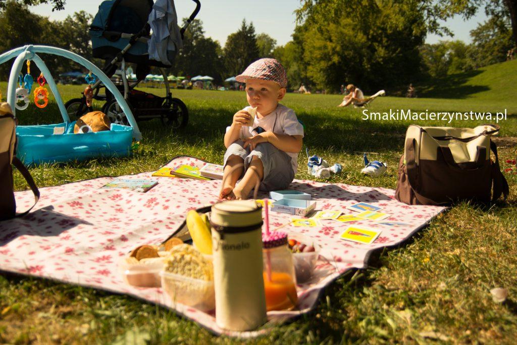 piknik-4